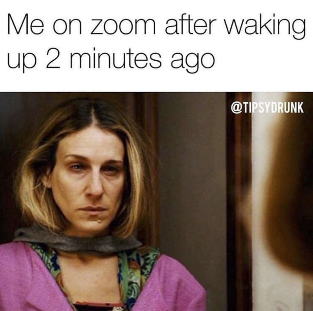 These Hilarious Zoom Memes Are Way To Real - Your Therapist IRL ...