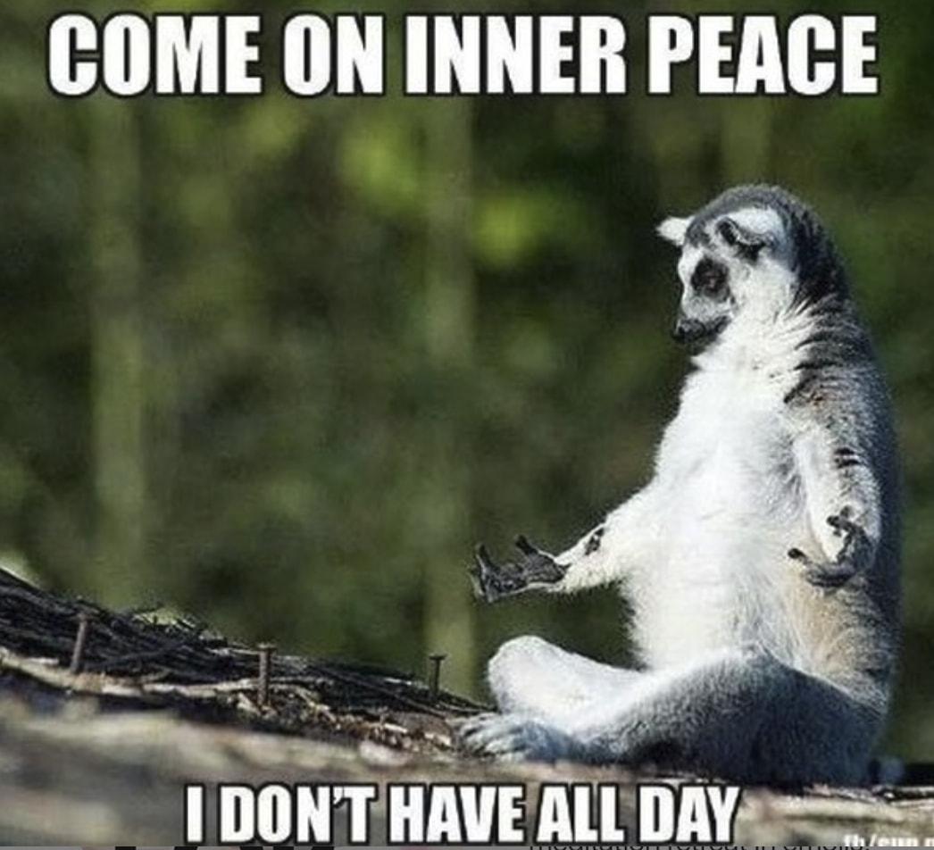 Image result for meditating meme