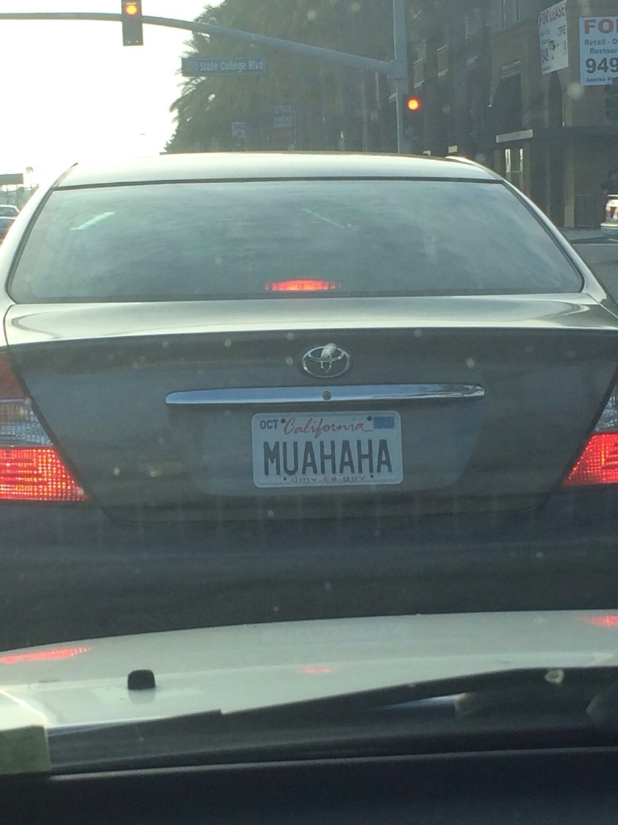 Funny License Plates You Wish You Thought Of Q A Guff