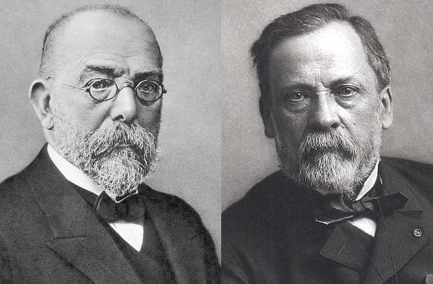 robert koch and louis pasteur