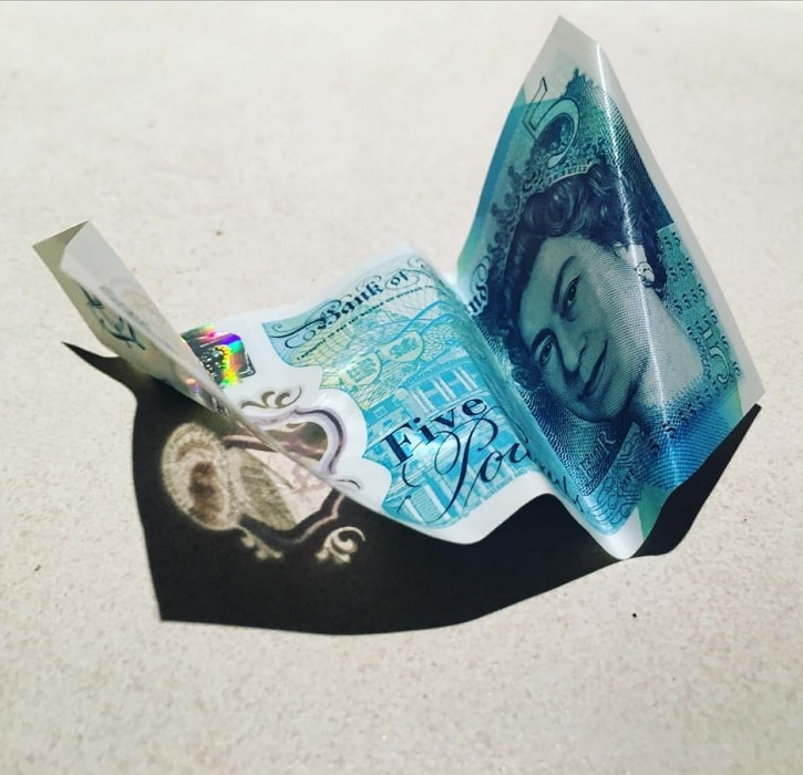 Will the new five pound note survive a pounding? We put it to the ...   700x725