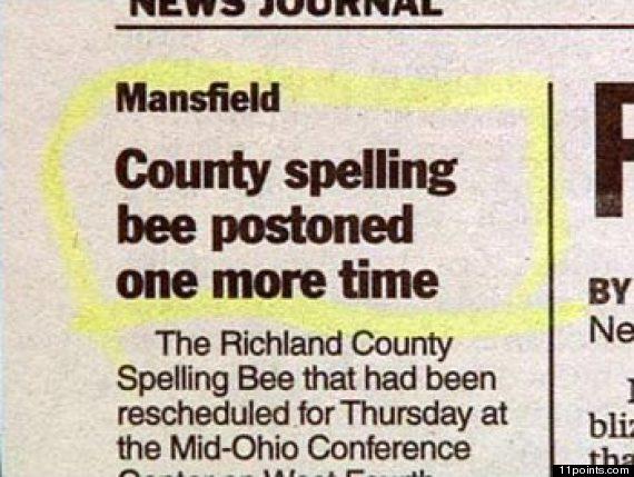 spelling bee essay