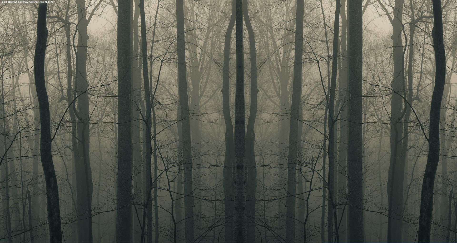 These Park Rangers Describe The Creepiest Things They've EVER Seen
