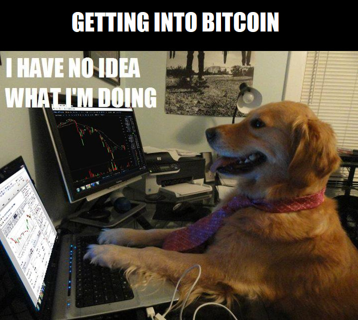 Invest In These Bitcoin Memes - Bitcoin   Memes