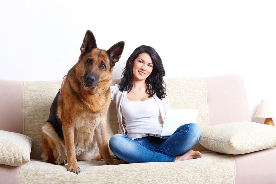 dog sex animal deutsch porn tube